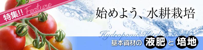始めよう、水耕栽培(2)基本資材の液肥と培地