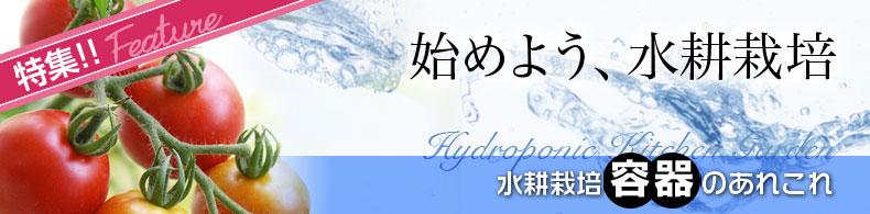 始めよう、水耕栽培(3)水耕栽培容器のあれこれ