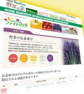 news_425