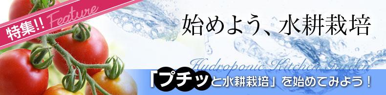 始めよう、水耕栽培(4)「プチッと水耕栽培」を始めてみよう!